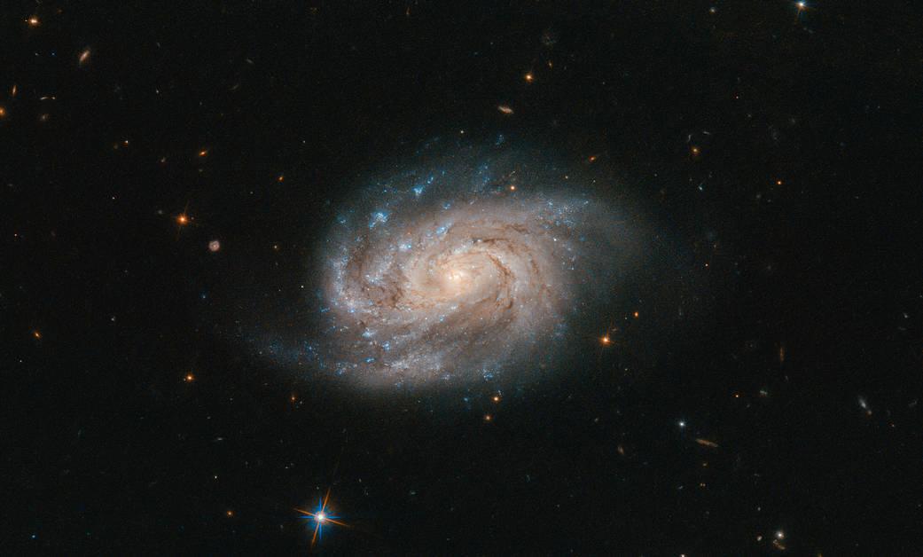 ハッブル宇宙望遠鏡が捉えたがか座の渦巻銀河NGC1803_d0063814_11273612.jpg