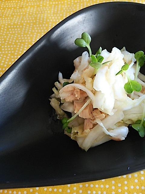 白菜サラダで朝ごはん_c0124528_09230435.jpg