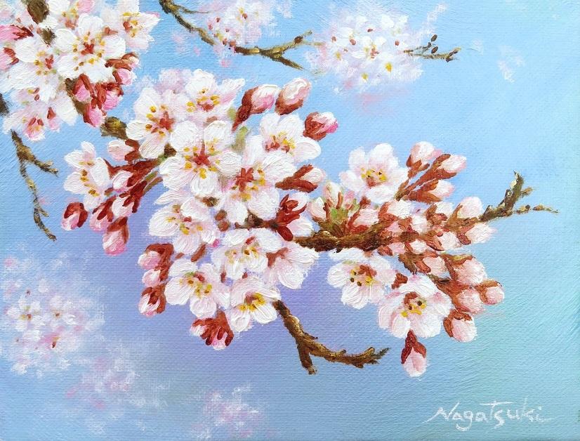 桜の油絵_b0089338_00332545.jpg