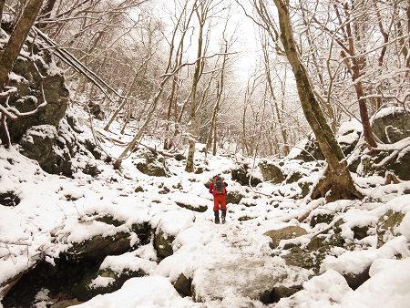 今年初のスノーシューで樹氷の森を堪能!!【台高・明神平界隈】1/19 ★MSRライトニングアッセントを加工修理する_d0387443_09444763.jpg