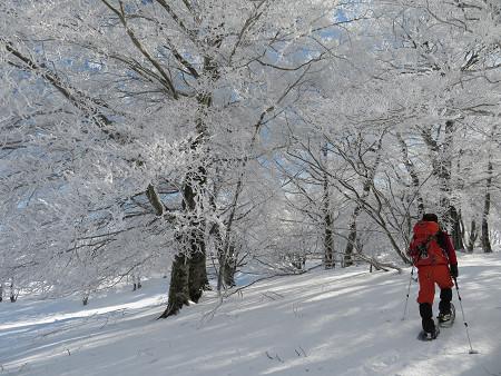 今年初のスノーシューで樹氷の森を堪能!!【台高・明神平界隈】1/19 ★MSRライトニングアッセントを加工修理する_d0387443_09450002.jpg