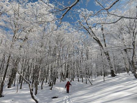 今年初のスノーシューで樹氷の森を堪能!!【台高・明神平界隈】1/19 ★MSRライトニングアッセントを加工修理する_d0387443_09450030.jpg