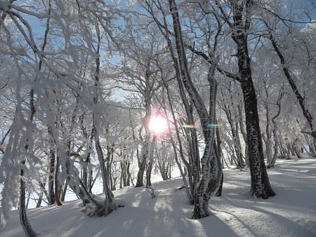 今年初のスノーシューで樹氷の森を堪能!!【台高・明神平界隈】1/19 ★MSRライトニングアッセントを加工修理する_d0387443_09450068.jpg