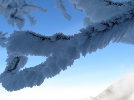 今年初のスノーシューで樹氷の森を堪能!!【台高・明神平界隈】1/19 ★MSRライトニングアッセントを加工修理する_d0387443_09454012.jpg