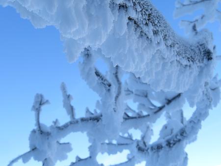 今年初のスノーシューで樹氷の森を堪能!!【台高・明神平界隈】1/19 ★MSRライトニングアッセントを加工修理する_d0387443_09454072.jpg