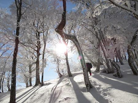 今年初のスノーシューで樹氷の森を堪能!!【台高・明神平界隈】1/19 ★MSRライトニングアッセントを加工修理する_d0387443_09454567.jpg