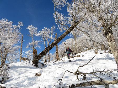 今年初のスノーシューで樹氷の森を堪能!!【台高・明神平界隈】1/19 ★MSRライトニングアッセントを加工修理する_d0387443_09455096.jpg