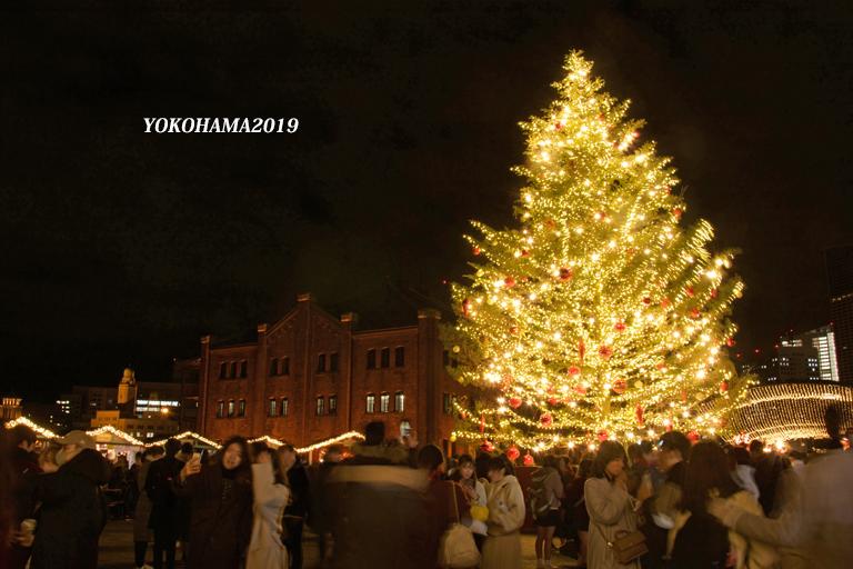 一夜限りのイルミネーション『そうだ 横浜、行こう』④_d0251161_10535662.jpg