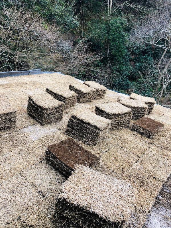 鎌倉でオープンハウスを開催します_d0021969_14564635.jpg