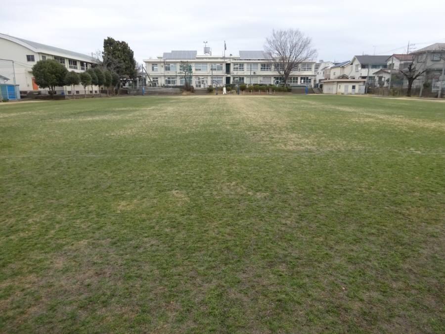 1月の13小校庭芝生その2_f0059673_23130337.jpg