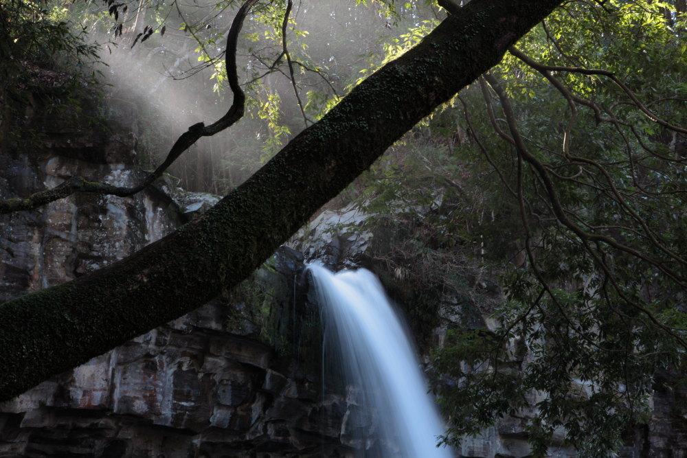伊豆市 萬城の滝 ラスト_e0165983_10313242.jpg