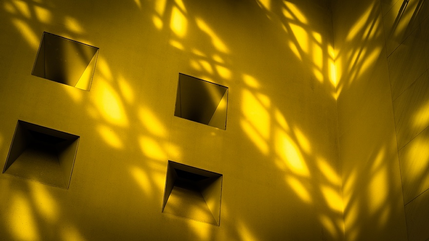 黄色いミュージアム_d0353489_18371854.jpg