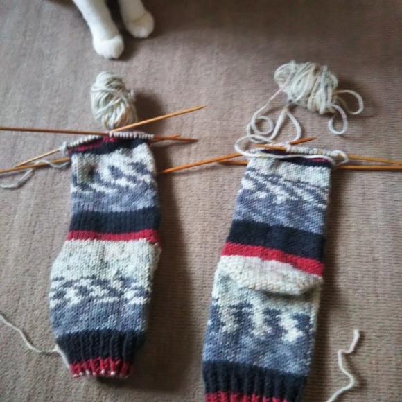 毛糸の靴下、ちゃたろうに見てもらう。_f0316507_09054739.jpg