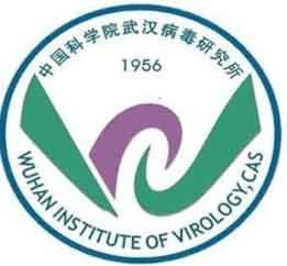 「中国科学院・武漢ウイルス研究所微生物菌毒種保存センター」_b0003330_1793561.jpg