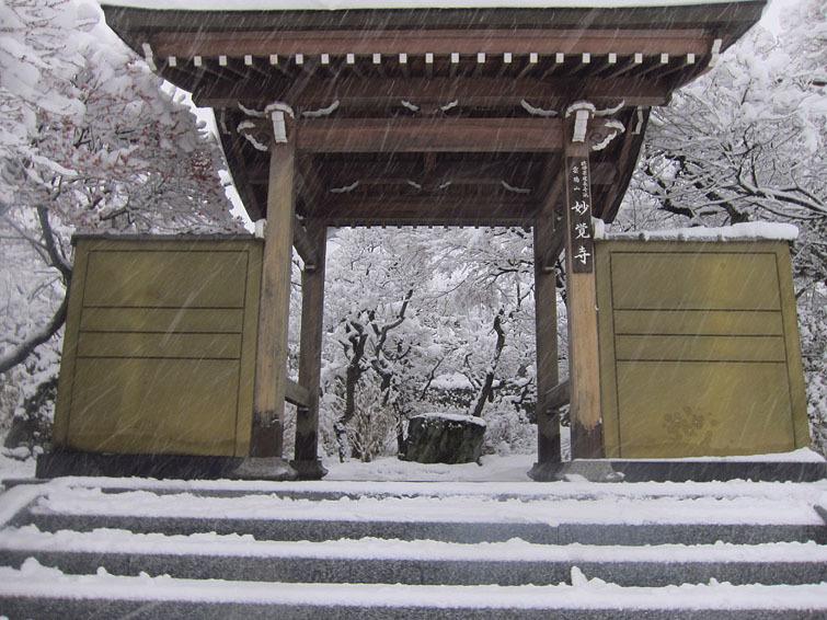 稲城市、妙覚寺(改訂版)_e0367330_17223456.jpg