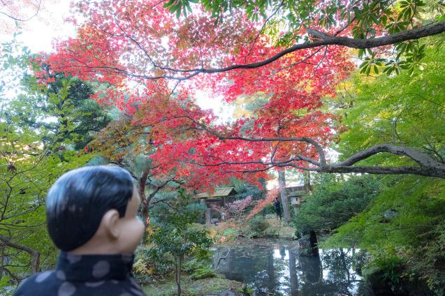 キラク写真教室 秋の金沢 撮影会① 金沢城周辺_e0369736_09282246.jpg