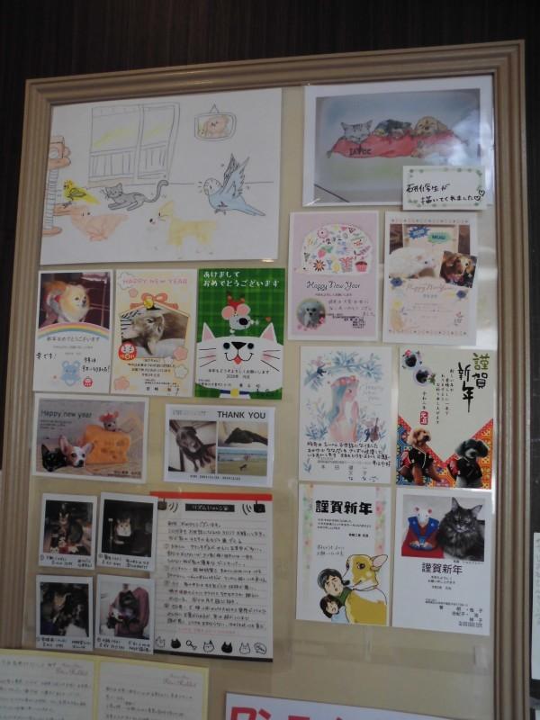 【年賀状貼り終えました✿】_b0059154_17021768.jpg