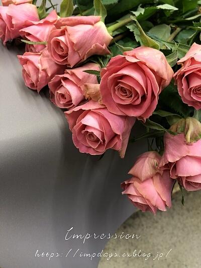今月のバラ ピンクテディ+_a0085317_20513232.jpg