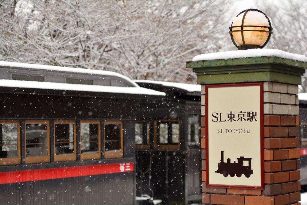 雪景色 2018年末 SL東京駅_e0373930_17460525.jpg