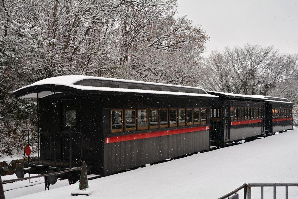 雪景色 2018年末 SL東京駅_e0373930_17460584.jpg