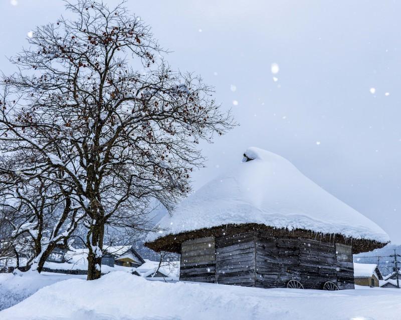 雪国の撮影会の想い出 御机 2014 0120_d0246136_23225913.jpg