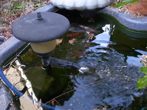 ろ過 装置 池