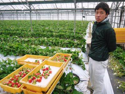 『陽だまり弁当』が届きました!熊本県菊池市のNPO法人「きらり水源村」の 心温まる取り組みを紹介! _a0254656_17495629.jpg