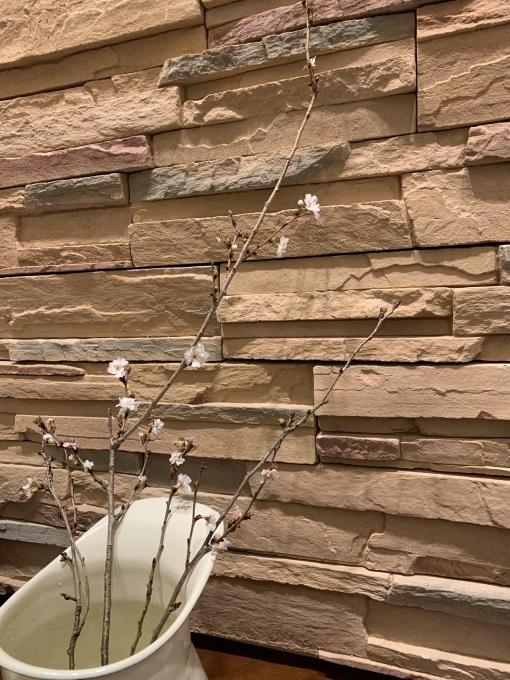 蝋梅と寒桜とおから(^^)v_b0328361_21074703.jpg
