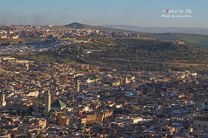 Morocco travel #迷宮都市Fez①_f0326278_22343211.jpg