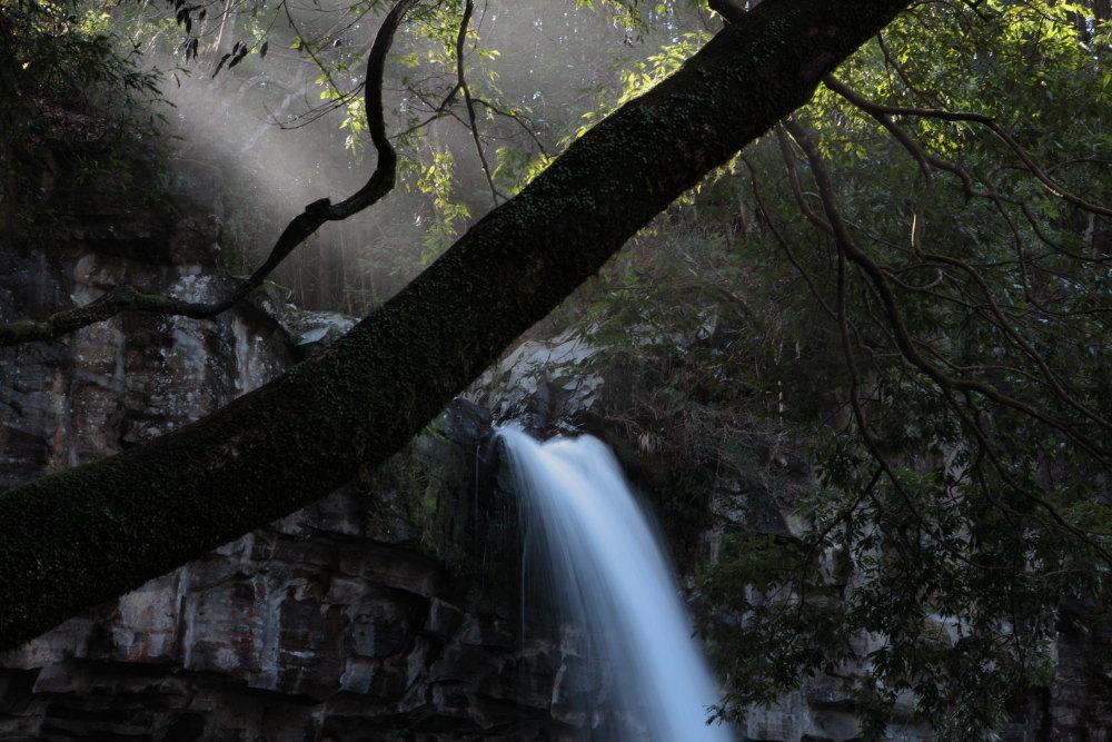 伊豆市 萬城の滝 おまけ_e0165983_11143202.jpg