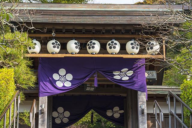 鎌倉散歩_b0145398_22404544.jpg