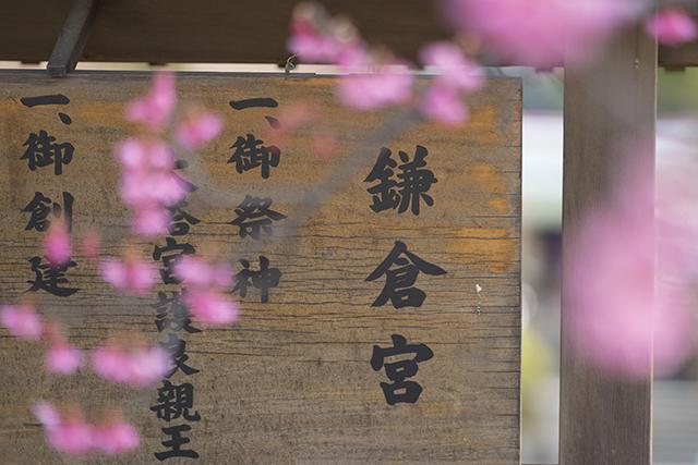 鎌倉散歩_b0145398_22415523.jpg
