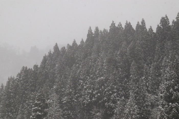 いで湯巡り・東北 山形 肘折温泉、宮城 鎌先温泉の列車旅  (2)_d0150720_09580871.jpg