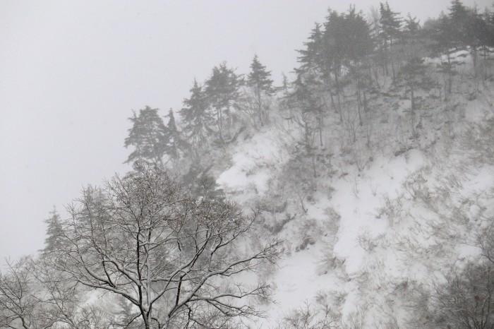 いで湯巡り・東北 山形 肘折温泉、宮城 鎌先温泉の列車旅  (2)_d0150720_11223488.jpg