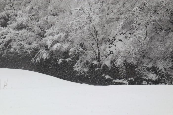 いで湯巡り・東北 山形 肘折温泉、宮城 鎌先温泉の列車旅  (2)_d0150720_11225771.jpg