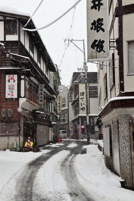 いで湯巡り・東北 山形 肘折温泉、宮城 鎌先温泉の列車旅  (2)_d0150720_11274812.jpg