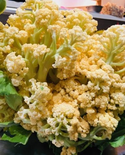 今朝の収穫 ロマネスコ 芽キャベツ オレンジカリフラワー達も収穫していきます_c0222448_12085603.jpg