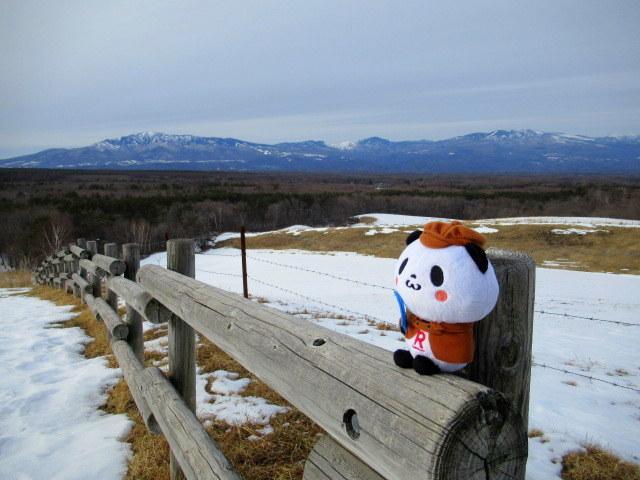 北軽井沢・浅間牧場の雪景色_f0236260_18294094.jpg