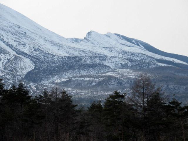 北軽井沢・浅間牧場の雪景色_f0236260_18343219.jpg