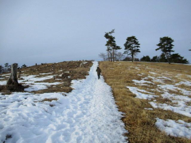 北軽井沢・浅間牧場の雪景色_f0236260_18362033.jpg