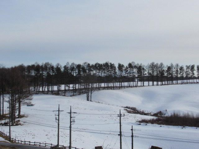 北軽井沢・浅間牧場の雪景色_f0236260_18365014.jpg