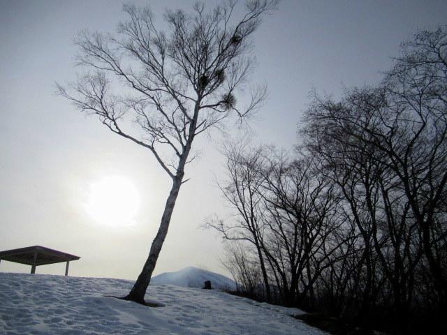 北軽井沢・浅間牧場の雪景色_f0236260_18403618.jpg