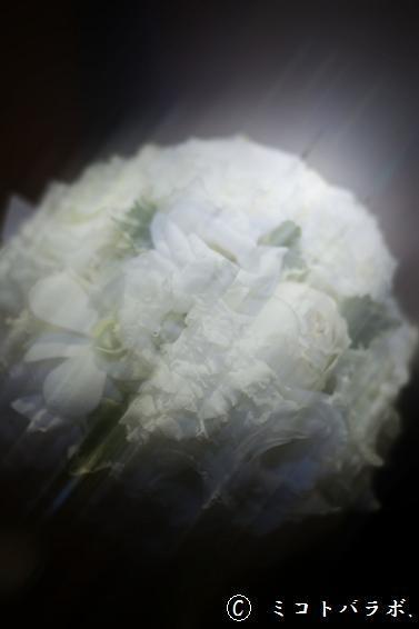 恵みは_c0343061_22513129.jpg