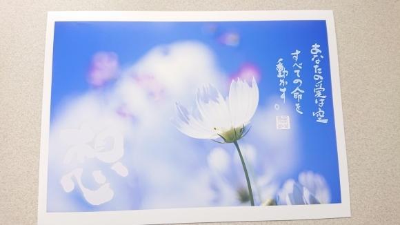 新月に想う、救いの詩***_e0290872_09483120.jpg