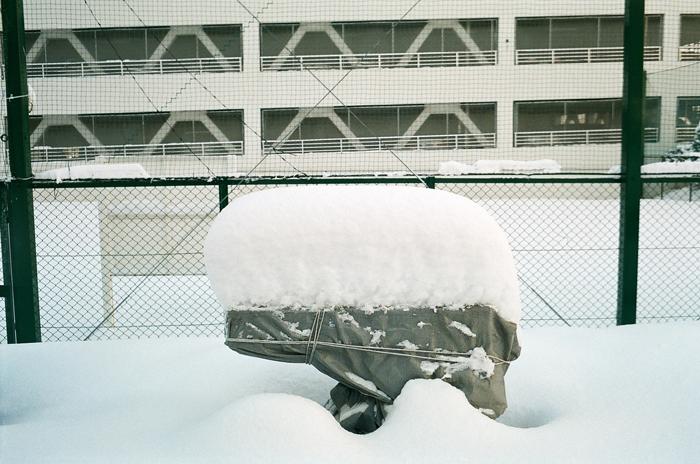 少し例年に近づいた雪_c0182775_16482081.jpg
