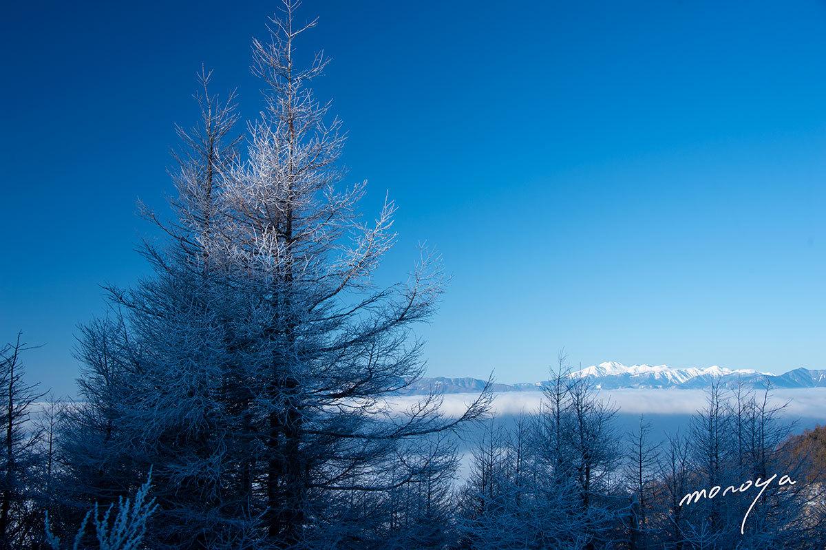 霧氷晴れ_c0085877_05535691.jpg