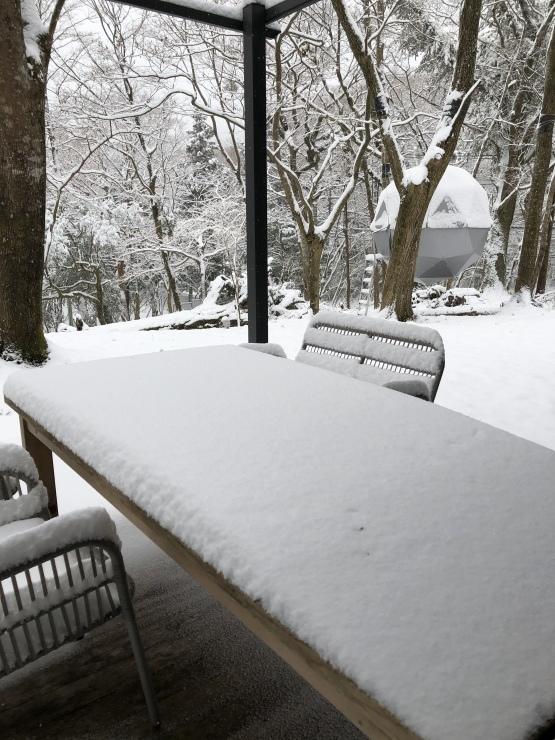 2020年1月26日 雪です_b0098584_12222983.jpeg