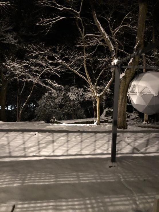 積雪15センチ位_b0098584_18345364.jpeg