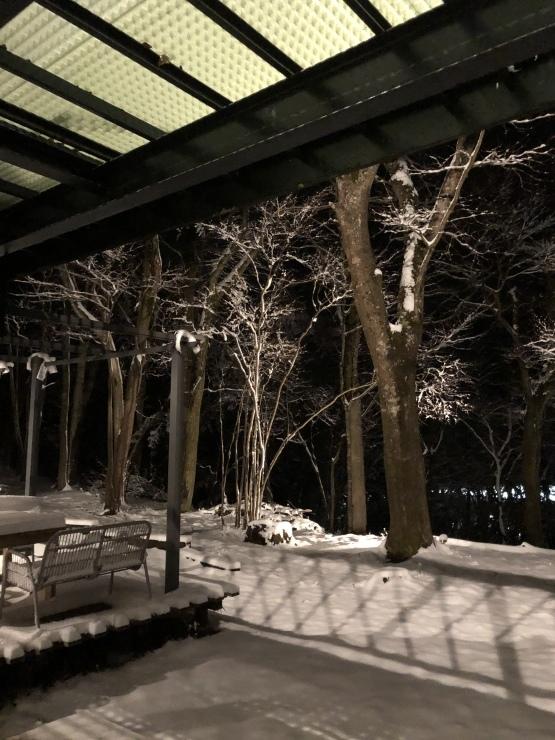 積雪15センチ位_b0098584_18350793.jpeg