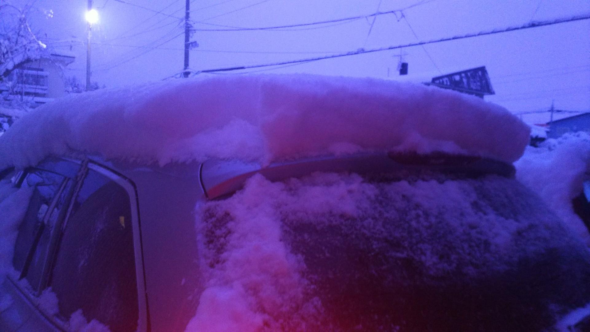 雪・・・降りました_b0343293_21265798.jpg
